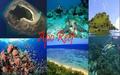 Apo Reef Natural Park