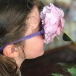 Peonia, la Regina di tutti i fiori