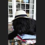Tanto di cappello, Ebony!
