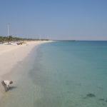 Diving-Golfo Persico