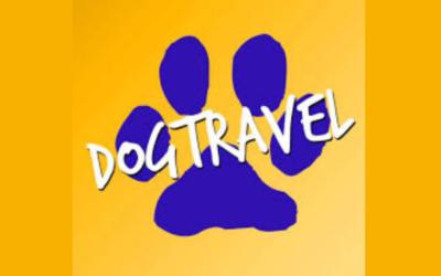 DogTravel, la soddisfazione di viaggiare comodi e felici con Fido