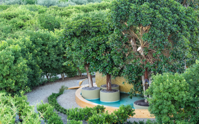 Radicepura Garden, quando la bellezza è green