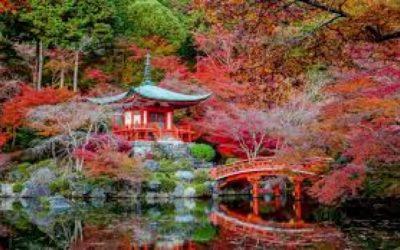 Il giardino giapponese a roma
