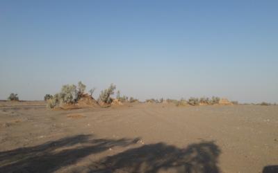 Kalut nel cuore del deserto Lut