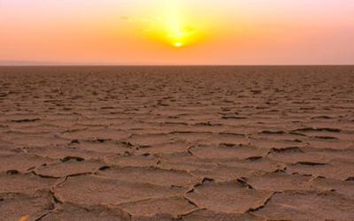 Cosa c'è nel cuore del deserto?
