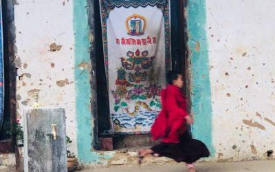 BHUTAN'S TIGER SKIN
