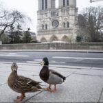 PARIGI…FIATO SOSPESO