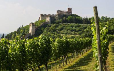 SOAVE – Borgo di storia e di vino