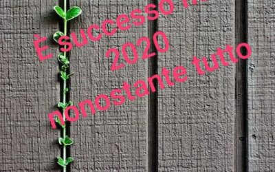 E' SUCCESSO NEL 2020…NONOSTANTE TUTTO – Il calendario di alcune cose buone nell'annus horribilis